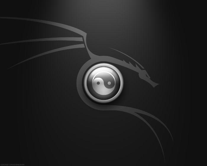 yin-yang dragon